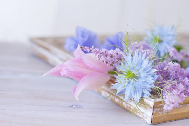 血行促進成分と毛乳頭活性成分が含まれる花王ブローネ薬用育毛エッセンス